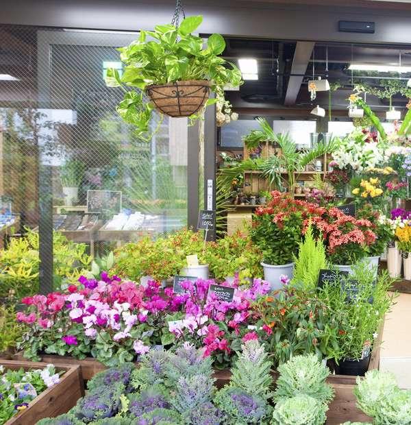 ردیاب ناوگان حمل گل و گیاه